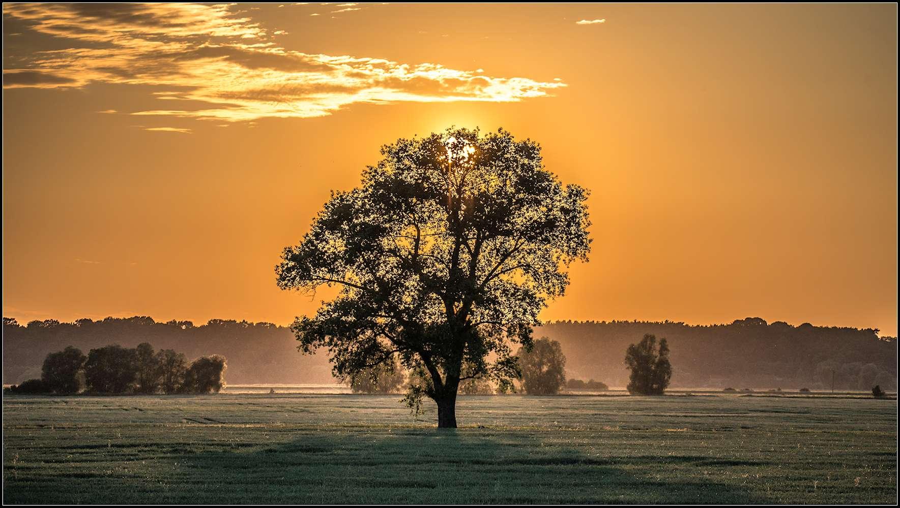 Zachód Słońca - Bobrowniki